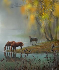 Explore amazing art and photography and share your own visual inspiration! Beautiful Horse Pictures, Beautiful Horses, Horse Water, Types Of Horses, Majestic Horse, Green Landscape, Equine Art, Pretty Horses, Nice To Meet