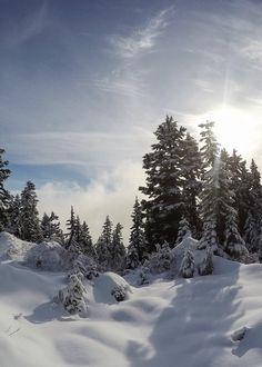 Photo Essay: Winter Wonderland on Grouse Mountain - Non Stop Destination