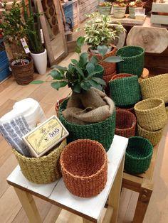 Autumn color baskets