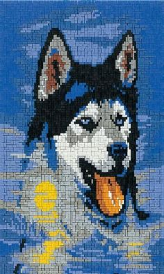 Huski Husky, Diy And Crafts, Arts And Crafts, Pearler Beads, Funny Animal Videos, Plastic Canvas Patterns, Cross Stitch Patterns, Dog Cat, Crochet