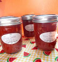 Homemade Taco Sauce (canning instructions included)