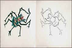 Jean Lurçat bestiary: semi-abstract gouache + lithograph