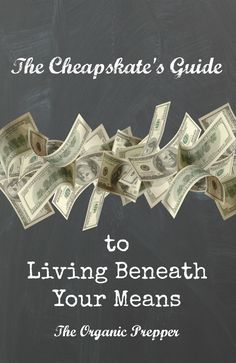 The Cheapskate's Guide to Living Beneath Your Means - The Organic Prepper