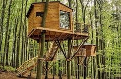 Hotel Robins Nest located in a forest in Hesse Germany is a serene little place where you can relax in the Beauty of nature. #treehouse #beinatree #cabin #tinyhouse #glamping #naturelovers #nature