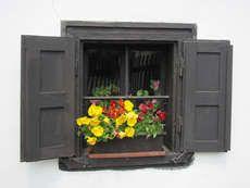 The Unit, Entertaining, Home Decor, Windows, Simple, Beauty, Flowers, Decoration Home, Room Decor