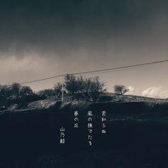 君知らぬ 風の撫でたる 春の丘[山乃鯨] #春 #haiku #photohaiku #poetry #micropoetry #jhaiku #snapseed #フォト俳句 #japanese #photoikku #spring #写真俳句