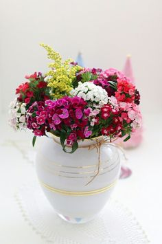 My winter flowers by cafe noHut, via Flickr  I love Sweet William!