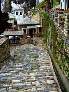 Street in Makrinitsa, Mount Pelion (Pilio Magnesia),Thessaly, Central Greece Places Around The World, The Places Youll Go, Places To See, Places To Travel, Around The Worlds, Beautiful World, Beautiful Places, Myconos, Places In Greece