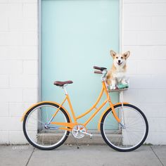 let's ride into summer, ok?!