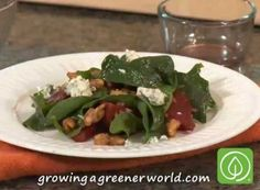 Roast Beet Salad with Bleu Cheese, Homemade Vinaigrette and Candied Walnuts