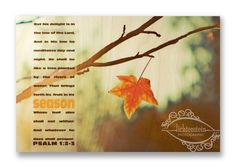 """Christian Wall & Desk Art - Vintage Photography Fall Leaf """"Seasons"""" with Bible Scripture anytimeart, Fall Leaf, Orange, Tree Branch, Minimal Watercolor Landscape Paintings, Watercolor Trees, Photography Gifts, Vintage Photography, Autumn Trees, Autumn Leaves, Tree Drawings Pencil, Christian Art Gifts, Spring Tree"""