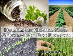 "Homemade Heated Seed Germination Bed Project Homesteading  - The Homestead Survival .Com     ""Please Share This Pin"""