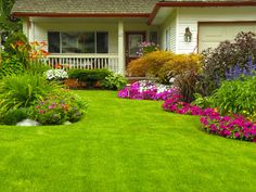 Learn how to avoid common mistakes when planting grass seed for a more full, lush, vibrant lawn.