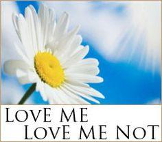 LOVE ME, LOVE ME NOT la nuova fragranza estiva di Yankee Candle  Una fresca margheritina di campo con magnifici petali bianchi, che aspetta solo di essere raccolta...pregustatela!