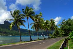 Road trips take on a whole different meaning in Moorea, where slow pace and frequent stops are the order of the day. And that's a good thing in an island where the local police take speeding very seriously. #Travel #Polynesia