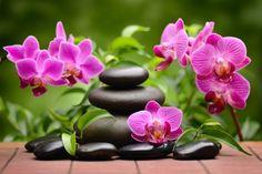 Cuadros y lienzos a medida zen