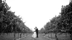 Happily Ever After - featured on the Pure Joy Catering blog Santa Barbara County, Event Planning Tips, Pure Joy, Happily Ever After, Corporate Events, Catering, Wedding Inspiration, Pure Products, Blog