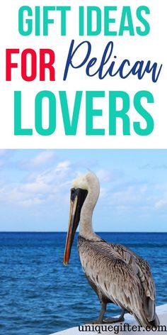 Gift Ideas For Pelican Lovers Pelican Gifts For Pelican Lover Present For Pelican Lover Pelican Fan Gifts Bird Gifts Unique Bird Gifts Creative Bird Gifts Thoughtful Gifts For Pelican Lover Presents For Men, Gifts For Mum, Gift For Lover, Lovers Gift, Pet Lovers, Unique Gifts For Men, Creative Gifts, Small Gifts, Buy Candles
