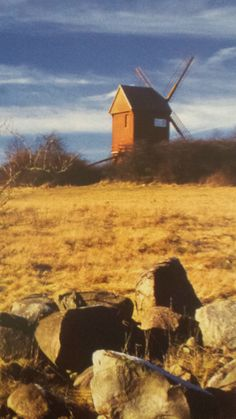 "Image from the book Erlebnis Wandern ""Borner Windmühle"""