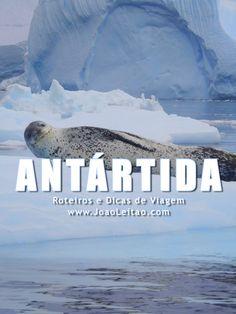 Antártida - Melhores Destinos