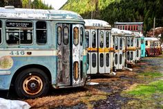 Ghost Town Mysteries: The old trolley buses of Sandon, B.C.