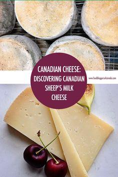 32 best italian sheep s milk cheese images latte milk italia rh pinterest com