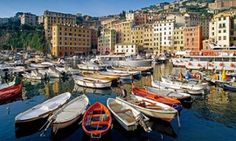 Boats in the harbour at Camogli.