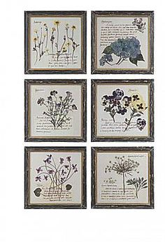 "WOOD FRAMED BOTANICAL PRINT, ASST. 9.75""SQ"
