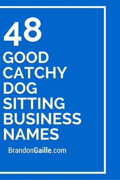 48 Good Catchy Dog Sitting Business Names