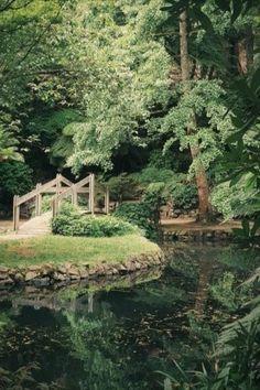 Garden Images, Garden Pictures, Garden Photos, Gardening Gloves, Gardening Tips, Japanese Garden Zen, Lake Garden, Garden Makeover, Landscaping Plants