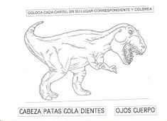 ESOS LOCOS BAJITOS DE INFANTIL: PROYECTO DINOSAURIOS Teaching Spanish, Moose Art, Simple, Print Coloring Pages, Dinosaur Projects, Preschool Learning, Prehistory, Middle Ages, Note Cards