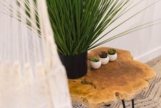 TABLE D'APPOINT WOODY - PLANTES ZÉNITH  #lusine #plante #zenith #tabledappoint #woody