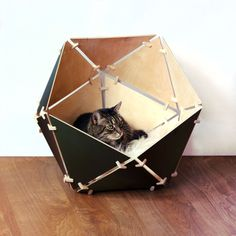 Pieces Of Pet Furniture That Are Actually Stylish