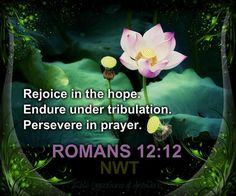Rejoice in the hope. Endure under tribulation. Persevere in prayer. - Romans 12:12.