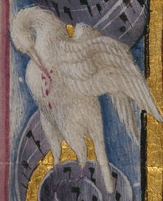 Saint Catherine of Alexandria, 1469, Taddeo Crivelli, detail of the pelican in the border, from a Book of Hours, Ms. Ludwig, IX 13, fol. 187V