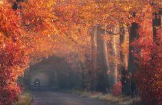 25 Awesome Landscape Photography