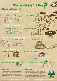 Should You Plant A Tree?