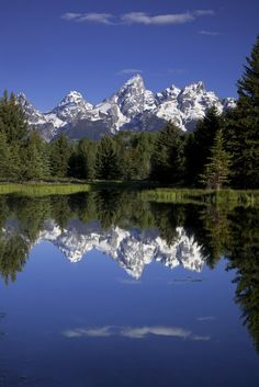 Teton Reflections - The Grand Teton mountains reflect off a beaver pond at Schwabachers Landing.  This location presents the classic view of the Grand Tetons.