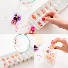 Add these edible flower ice cubes to your cocktail.