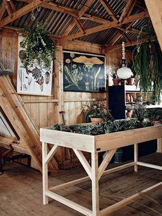 Een kweektafel vol met vetplantjes en cactussen, in eenvoudige terracotta potjes, is een bijzondere invulling voor deze ruimte.