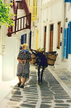The old lady and the donkey - Mykonos Town, Greece *