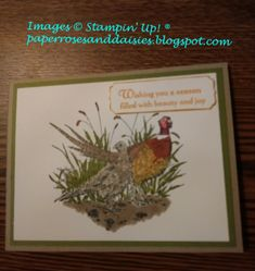 Peaceful Pleasant Pheasant by PaperPepperPumpkin - Cards and Paper Crafts at Splitcoaststampers Fall Cards, Holiday Cards, Christmas Cards, Paper Cards, Men's Cards, Christmas Catalogs, Bird Cards, Thanksgiving Cards, Animal Cards