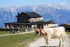 Patscherkofel, Innsbruck, Austria