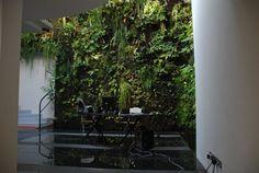 bureau contemporain avec mur végétal intérieur luxuriant