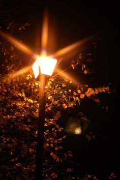 An example of rays around a street lamp, which often develops alongside visual snow. Visual Snow, Traffic Light, Street Lamp, Wall Lights, Street Lights, Night, Whisper, Photography, Orange
