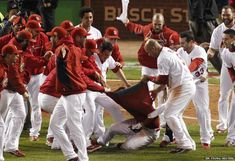 St Louis Cardinals' David Freese had his jersey ripped off by team-mates after hitting the game winning home run against the Texas Rangers during the MLB's World Series baseball championship in St Louis, Missouri.