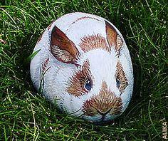 Rabbit painted rock.