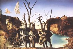 Swans reflecting Elephants again.-Salvador Dali,Wall poster,Fine Art print,Gallery Canvas wrap,(Custom Sizes Up To 60 inches) Salvador Dali Gemälde, Salvador Dali Paintings, Amy Brown, Elephant Canvas, Illusion, Modern Art, Fine Art Prints, Original Paintings, Opera