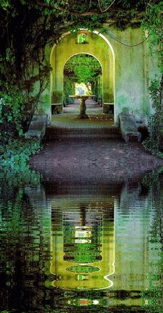 Les mondes aquatiques se répondent et s'entrelacent dans les perspectives des fontaines.