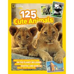 125 Cute Animals | National Geographic Store